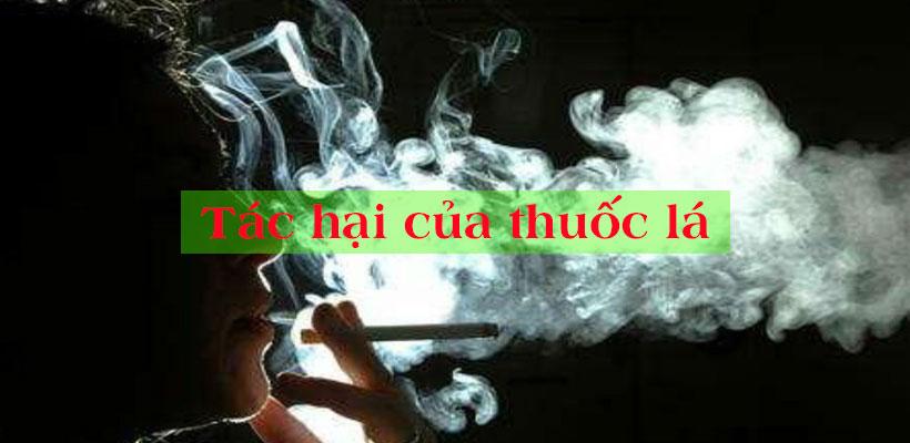 Tác hại của thuốc lá đối với sức khỏe sinh lý nam