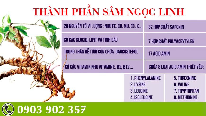 sam-ngoc-linh-3