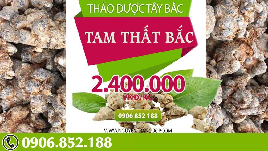 tam-that-bac5